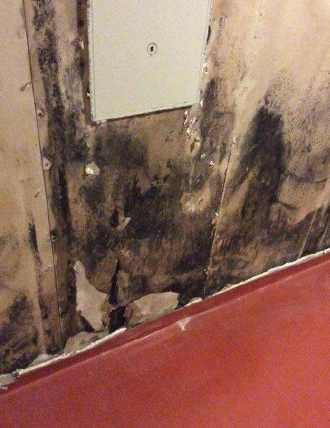 SOPP: Bildet viser gammel skade med svertesopper i selve veggen, står det i takstrapporten.