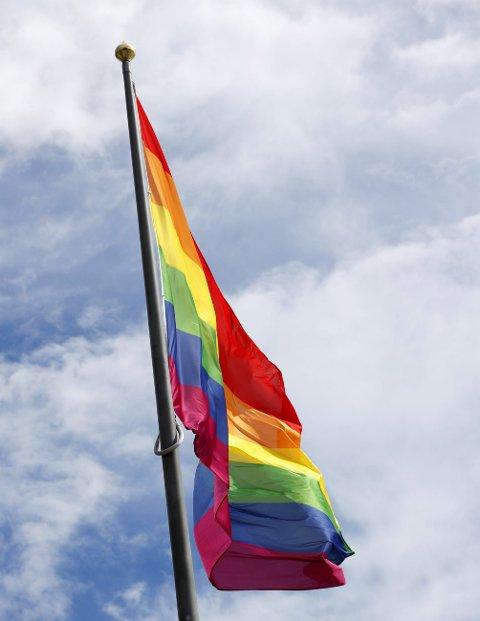 PRIDE: Regnbueflagget vil vaie også fra en kommunal flaggstang når historiens første Prideparade går av stabelen i Brumunddal St. Hansaften.
