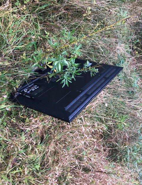Tanja Modøl Juel fann denne tv-en ved ein skogsveg på Ranavik, og lurer på om nokon har kasta den eller gløymt den der. (Foto: Privat).
