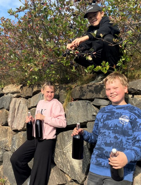 """KORT OG GODT: Marlen Tengesdal (f.v.), Jonathan Langhelle Ramsli og Dennis Kvamsø Strand garanterer at aroniasafta er både kortreist og """"sjukt god"""". Bæra har dei plukka rett utanfor """"skuleporten""""."""
