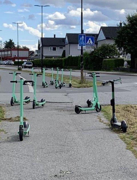TIL HINDER: Dette var et dagligdags syn i Vestbygata i fjor. Nå håper kommunen at de i samarbeid med de ulike sparkesykkelaktørene skal en slutt på parkeringskaoset.