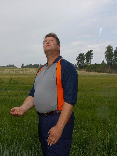 Kjell Erik Kordal venter på regnet. Han er bekymret for at kornet drives til modning i stedet for å fylle lageret av næring i akset.
