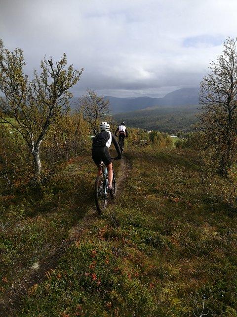 TERRENG: Smedhaugrittet byr på fine sykkelstier i flott natur.