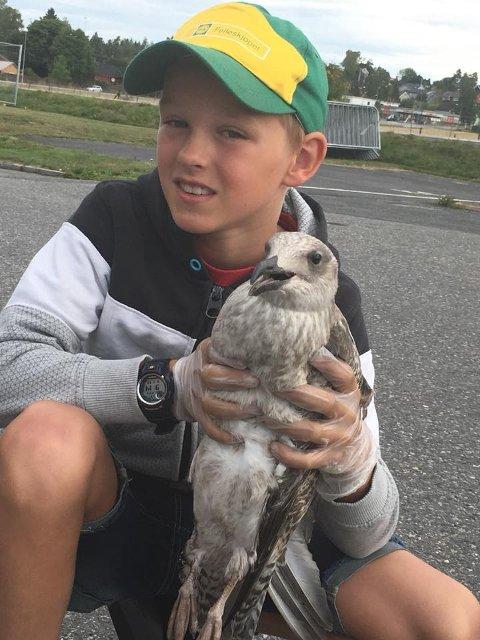 Aksel Krog (10) med den skadde måken utenfor Ås videregående skole.