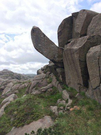 MASKOT: Den berømte Trollpikken i Egersund blir nasjonal maskot for prostatasaken.