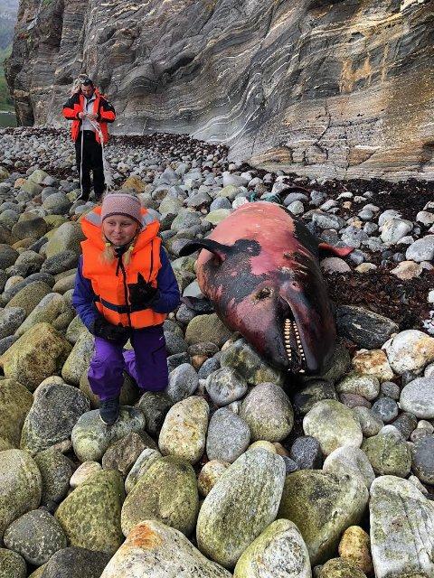 Maja Bernhardsen fant hvalen på tur med pappa Kristian fredag.