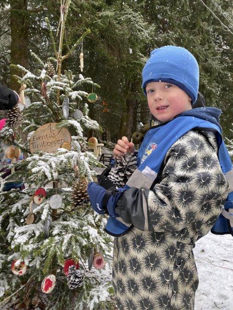 Jakob Sætre Otterskred (5) er veldig fornøyd med hvordan treet til barnehagen sin ble seende ut.