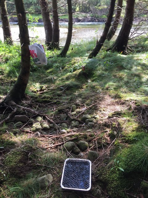 FORSØPLING: På Risholmen på Gjedrem fant Tordis Helland en samling søppel.