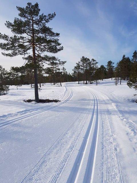 NYKJØRT: Slik så Tverråsen ut fredag formiddag.