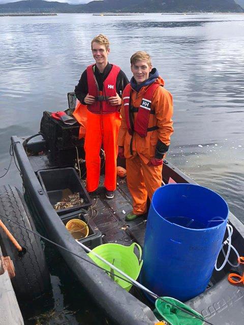FISKEKOMPISAR: Joakim Grindheim (19) og Thor-Fredrik Kjørsvik (20) hadde ein hektisk, men veldig morsom og innbringande sommarjobb med å fiske leppefisk på Svanøy.