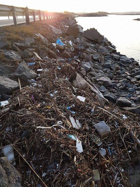 Fullt av plast: Stormen Urd blåste inn mye søppel langs Hvalerveiens vestside. Fredag skal det ryddes.