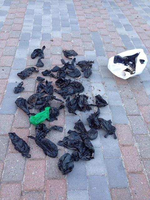 Litt av en fangst: Monica Norli Hansen plukket opp 39 hundebæsjposer og diverese annet søppel i løpet av en kort tur i marka ved Rekustad skole.
