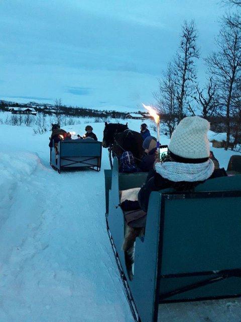 Begeistring. Kanefart med hest og slede vakte begeistring blant deltagerne på vinterturen tilBarnas Stasjon.