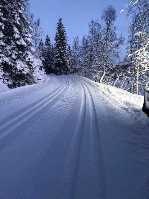 JULEKLART: Det er gode forhold på Herjangsfjellet i julen. Foto: Herjangsfjellet Tur- og Løypelag.
