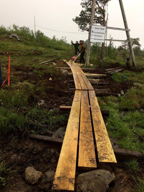 ENGASJERT GJENG: Selv om det høljet ned på søndag, stoppet ikke det de ivrige dugnadsfolkene fra å legge ut plank på Ankenesfjellet. Foto: Privat