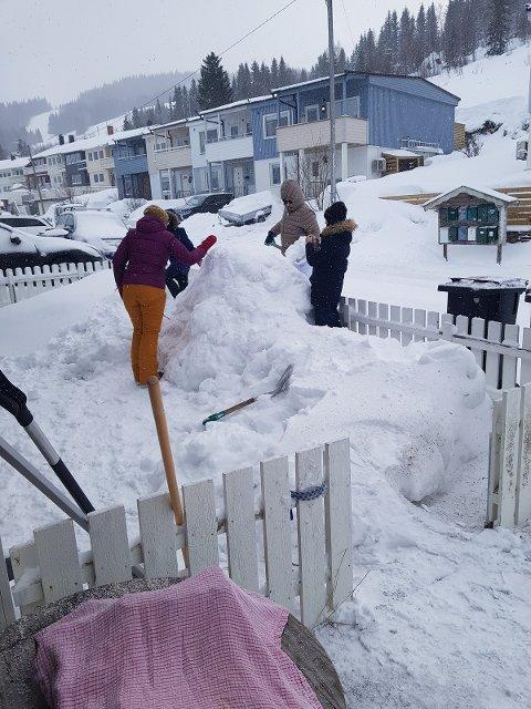 FIKK TIDEN TIL Å GÅ: Søndag bestemte Ankenes-familien seg for å være i aktivitet i egen hage.