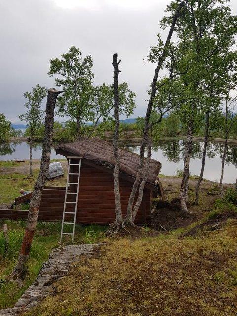 Finn-Erik Sommerseth er skuffet over tilstanden på trærne ved gapahukene.