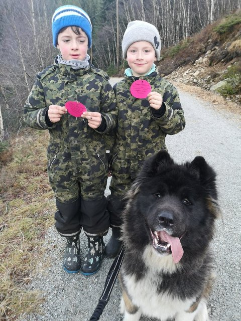 Torgeir og Sindre Efteland Vølstad i tillegg til hunden Samira tok nylig turen innom Brekko, der fant begge disse lappene.