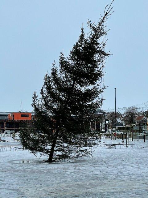 Juletreet på torget har blåst skeivt i det sure januarværet.