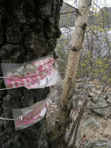 Det er nå høytid for skogbranner og de fleste turområder har synlig varsler om brannfare. Denne plakaten langs Oltedalsvatnet er mildt sagt lite synlig.