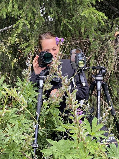 Fartskontroll: Politibetjent Jeanette Lysen godt skjult i buskene.