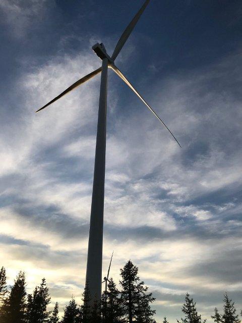 SIER TVERT NEI: I 2013 sa Kongsvinger nei til etablering av vindmøllepark i Glåmberget. Nå har et svensk selskap spurt om kommunen kan revurdere sitt standpunkt. Svaret er et unisont nei!