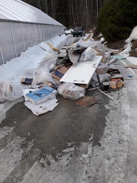 - Vi aner ikke hvem som har gjort dette, men det er helt utrolig at noen gjør noe sånt, sier Ole Ringlund ved Viken gartneri på Fåvang som ble nøtt av denne søppelhaugen da han kom til gartneriet søndag ettermiddag.