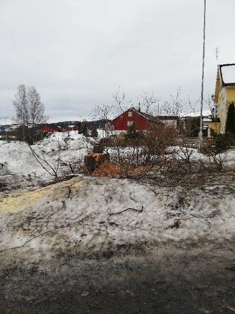 BARE ASFALT IGJEN: Etter at trærne i Lunner sentrum ble fjernet er det bare asfalt igjen.