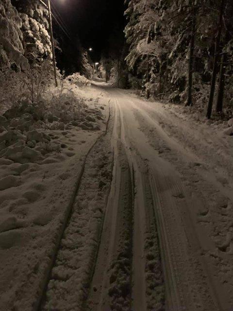 SKISPOR: For dem som foretrekker naturlig snø, er det mulig å benytte seg av løypenettet rundt Høyåshytta. Dugnadsgjengen i Halden Skiklubb har kjørt opp spor i alle lysløypene.