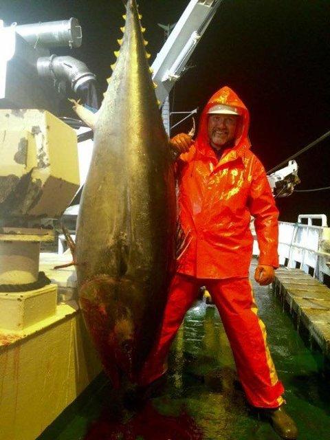 """STORFISK: Haugesunderen Ken Meyer om bord i Austevoll-båten """"Talbor"""" med en 180 kilo tung makrellstørje tatt som bifangst under fiske av hestmakrell. Foto: Privat"""