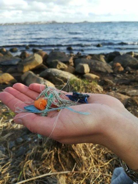 Plast i naturen er et problem som har fått mye fokus det siste året, med god grunn.
