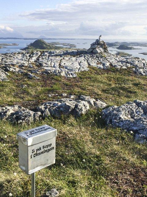 UTSIKT: Ingen høye topper på Øksningan, men det forhindrer ikke en fantastisk utsikt.  FOTO: Eldbjørg Larsen