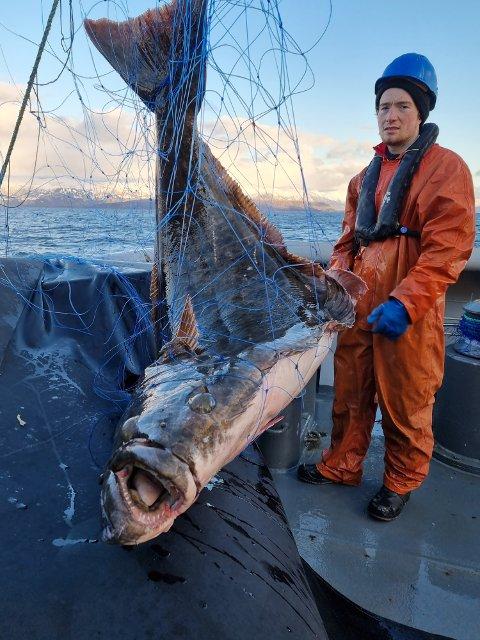 ULOVLIG FISKE: Kystvakta har patruljert på Helgeland de siste dagene. Her er det gast Kristian Halland på KV Heimdal W332 som tar rede på fisk fra aksjonen.
