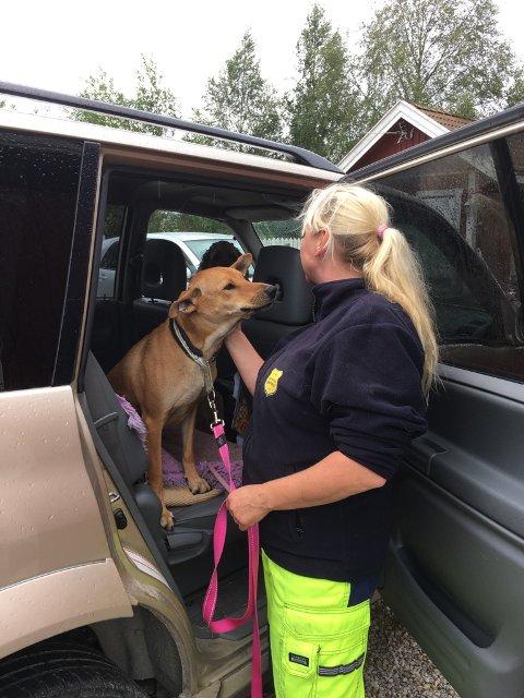 Hundeeier Marit Høvik er glad for å ha Theo hjemme igjen.