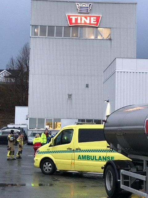 TINE: Det var på meieriet i Sandnessjøen at gasslekkasjen ble oppdaget.