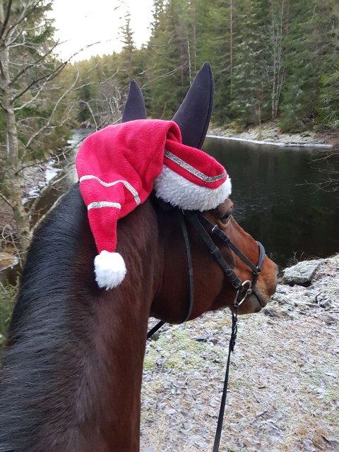 God jul: Med eller uten nisselue. Foto: Hilde Næss