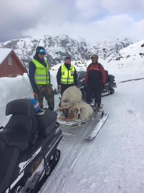 Takka vere innsats frå (f.v.) Espen Berge-Soldal, Tarjei Mikkelsen, Olav Gunnar Hjelmeland og fotograf Magne Skåle Hansen kan Hesjagutane i sleden pusta letta ut.