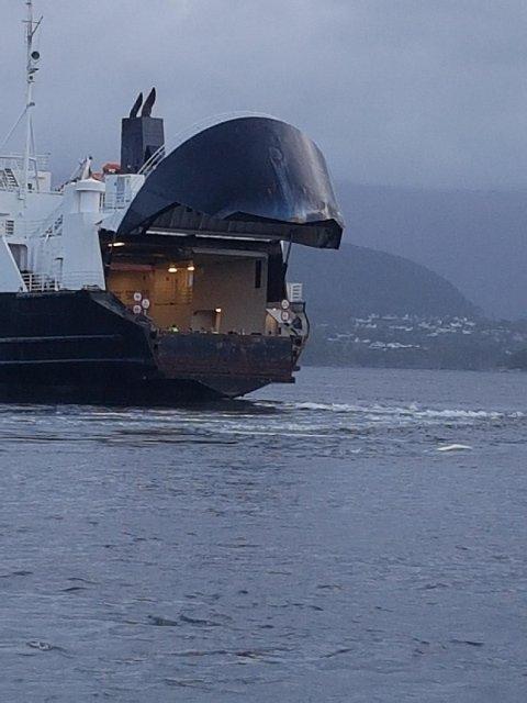 Ei ferje fekk i dag tidleg problem med å leggja til kai på Ranavik etter at eit stort røyr hamna i sjøen.