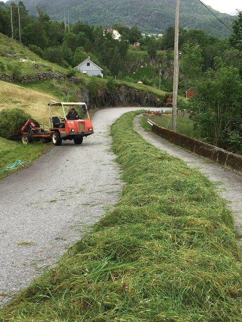 Bakken var så våt at bonde Arne Sveinung Utåker brukte vegen som underlag då graset skulle ballast. (Foto: Kristine Hellås).