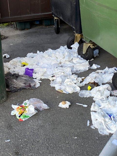IKKE PENT: Nå får beboerne i Landstadsgate 6 flere flere søppeldunker, så det blir plass til all søpla.