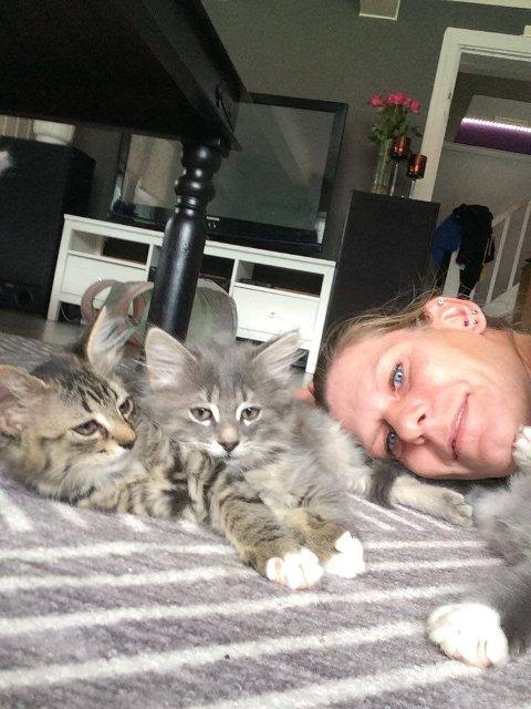 STOR RESPONS: Therese Rikardsen (35) selger tre kattunger og beholder en selv. Reponsen har vært stor og hun har fått mellom 20-30 henvendelser.