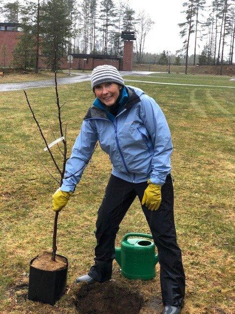 PLANTET: Ordfører, Kari Anne Sand, plantet fire epletrær på Kongsberg gravlund. Foto: Privat.