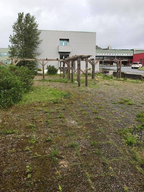 FØR: Slik så parken ut før dugnaden