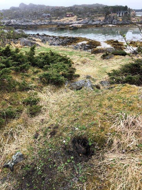 En person med metallsøker er registrert i dette området ei uke før spadestikkene ble oppdaget.