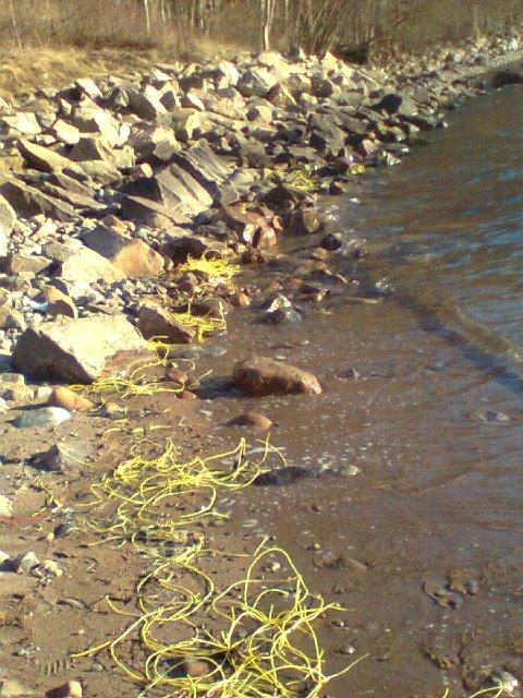 PLAST: Sprengtråder i plast følger med sprengmassene ut i sjøen, og flyter nå opp på strendene i Moss.