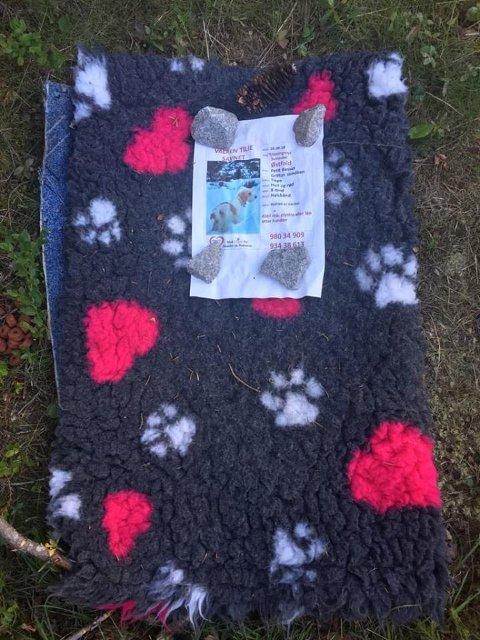 BORTE: Hundepleddet og plakaten med kontaktinformasjon var alt som lå igjen da familien reiste tilbake og håpet på å finne Tilie i buret sitt.