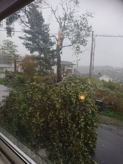 MOSS: På Krapfoss så det slik ut ved 16.00-tiden fredag.