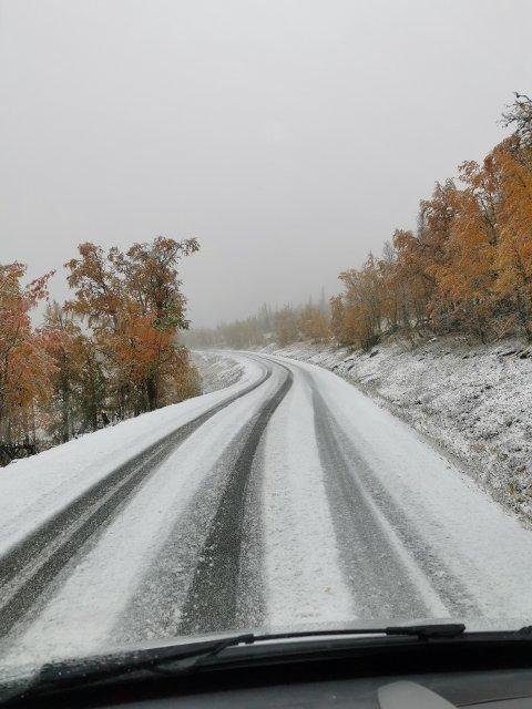 VINTEREN ER HER: Dette synet møtte Bengt Steinar Nordbakk da han kjørte over Kveli-fjellet i formiddag.