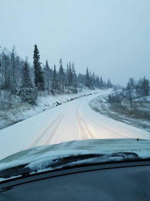 SNØ: Bengt Steinar Nordbakk knipset dette bildet på veg over Kvelifjellet i Lierne torsdag morgen. Han anslår at det har kommet to til tre centimeter snø i løpet av natta.