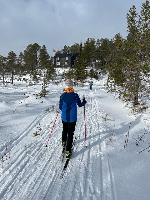FINE FORHOLD: Om værvarselet slår inn, vil det bli flotte forhold i skiløypene til uka. Dette bildet er tatt ved Koltjønnhytta, der mange valgte å ta turen søndag.